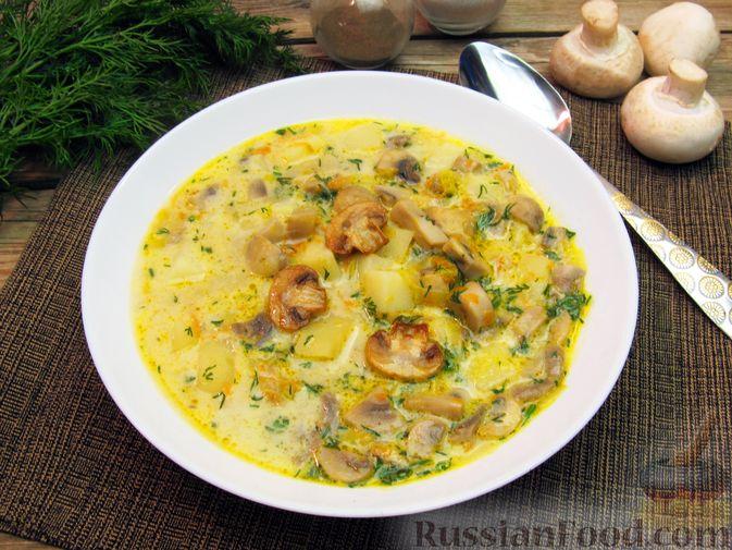 Суп сырный с грибами шампиньонами